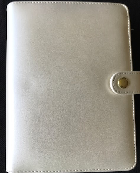 Image for Metallic Ivory 1.5-inch, 6-ring mini binder